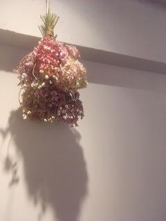 吉祥寺のヘッドスパサロンL'TLYL(リトリル)のBlog〜マイハニーレメディーヘアオイル&吉沢の4月のお休み〜